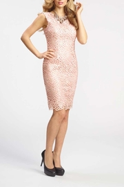 Frank Lyman Lace Sheath Dress - Product Mini Image