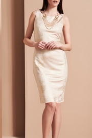 Frank Lyman Blush Shimmer Dress - Other