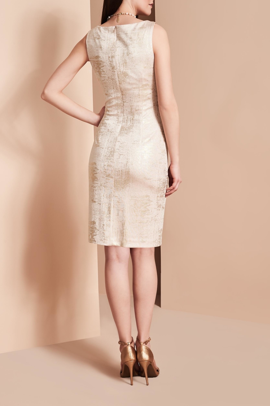 Frank Lyman Blush Shimmer Dress - Back Cropped Image