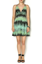 Free People Gabriella Dress - Front full body