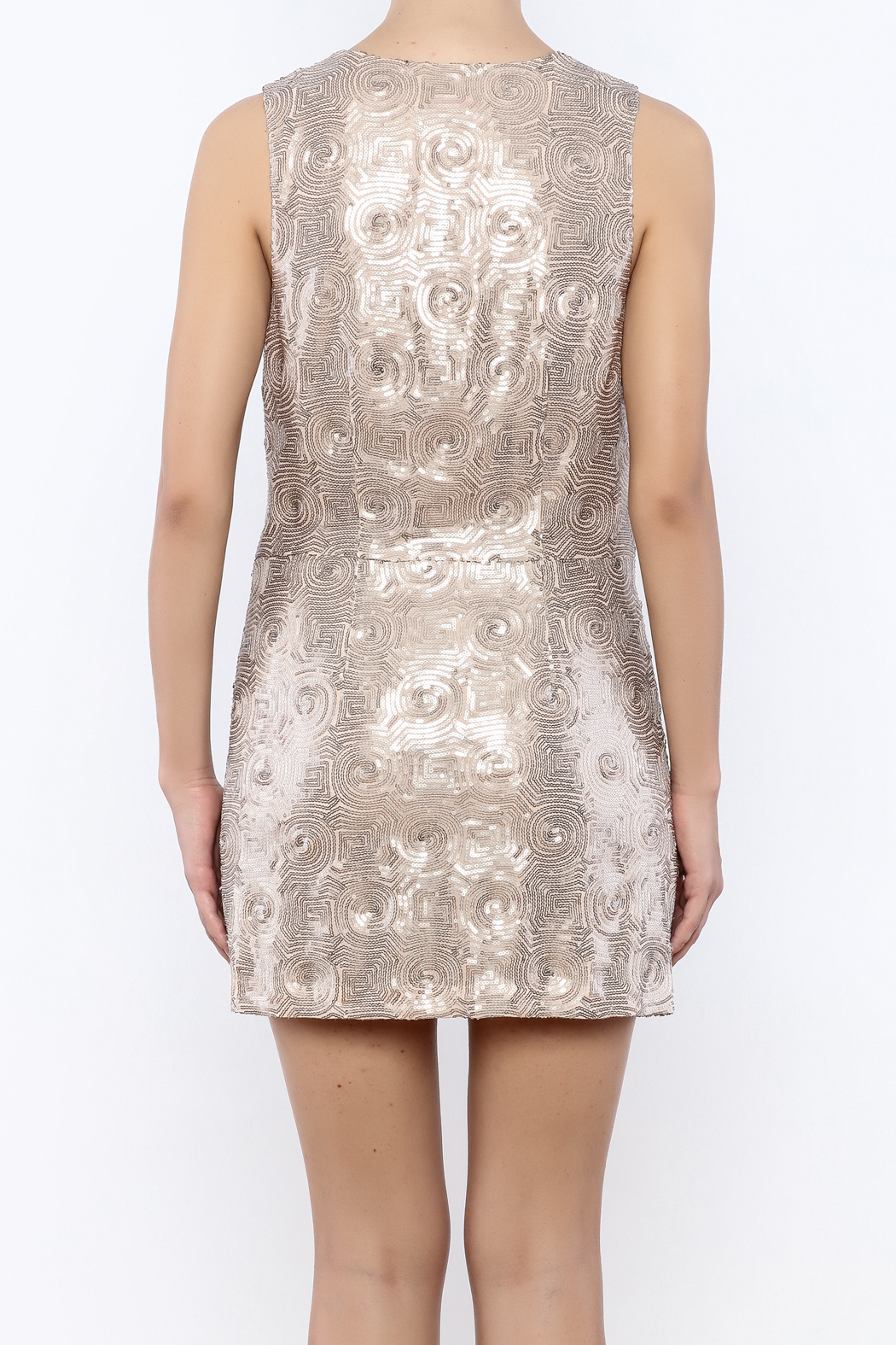 Free People Paris Party Dress - Back Cropped Image