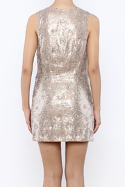 Free People Paris Party Dress - Back cropped