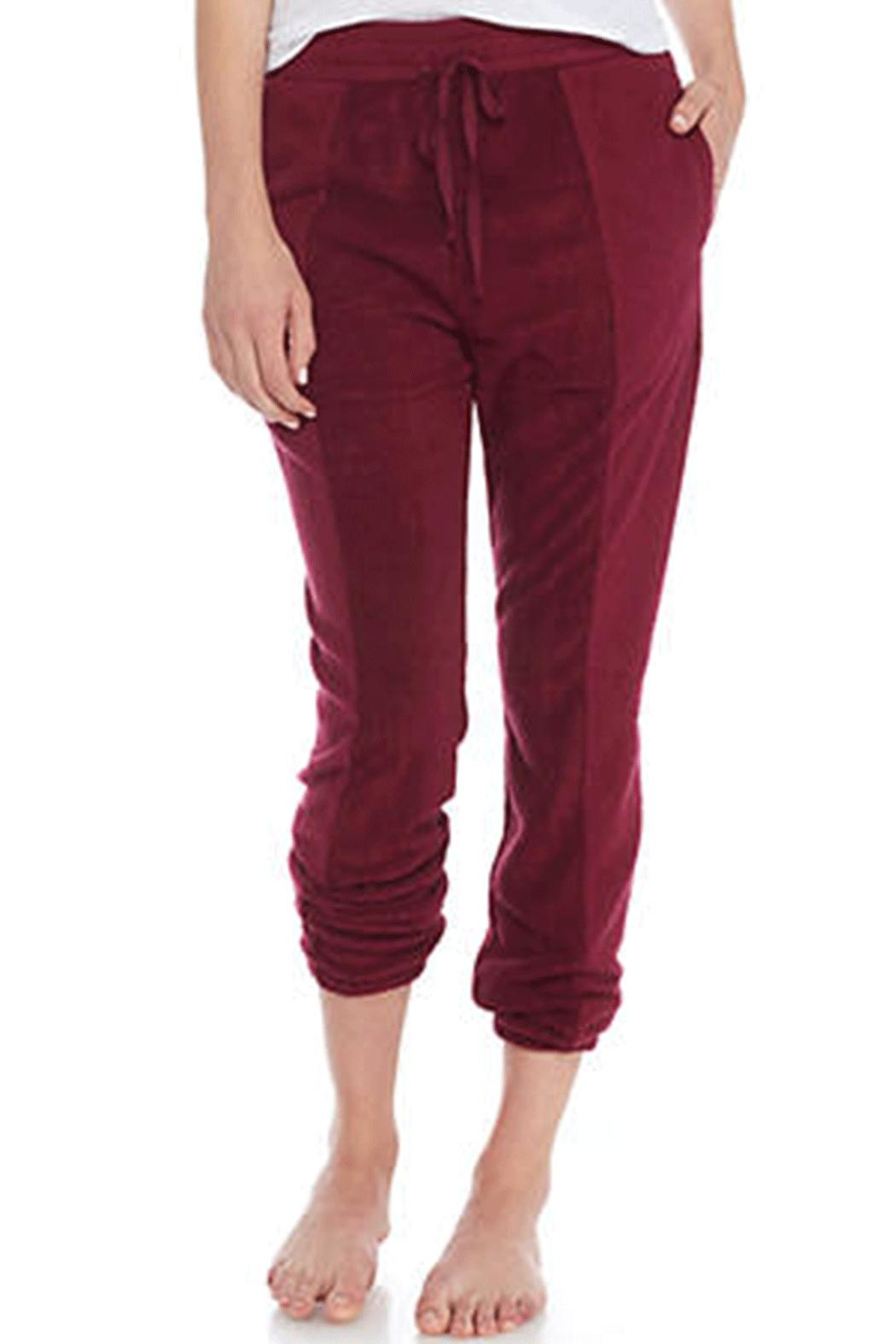 Free People All-Day All-Night Joggers - Front Cropped Image