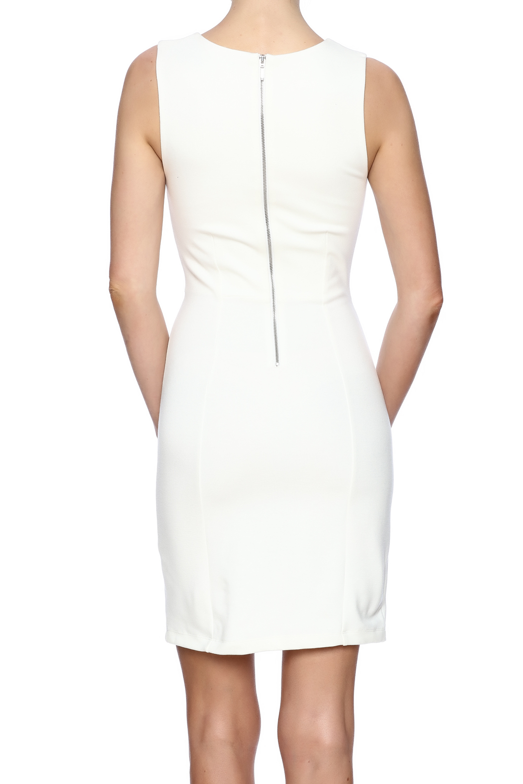 French Connection Sleeveless Dress - Back Cropped Image