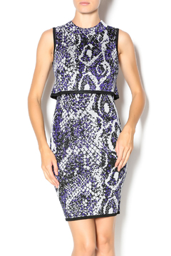 Shoptiques Product: Spotlight Boa Dress