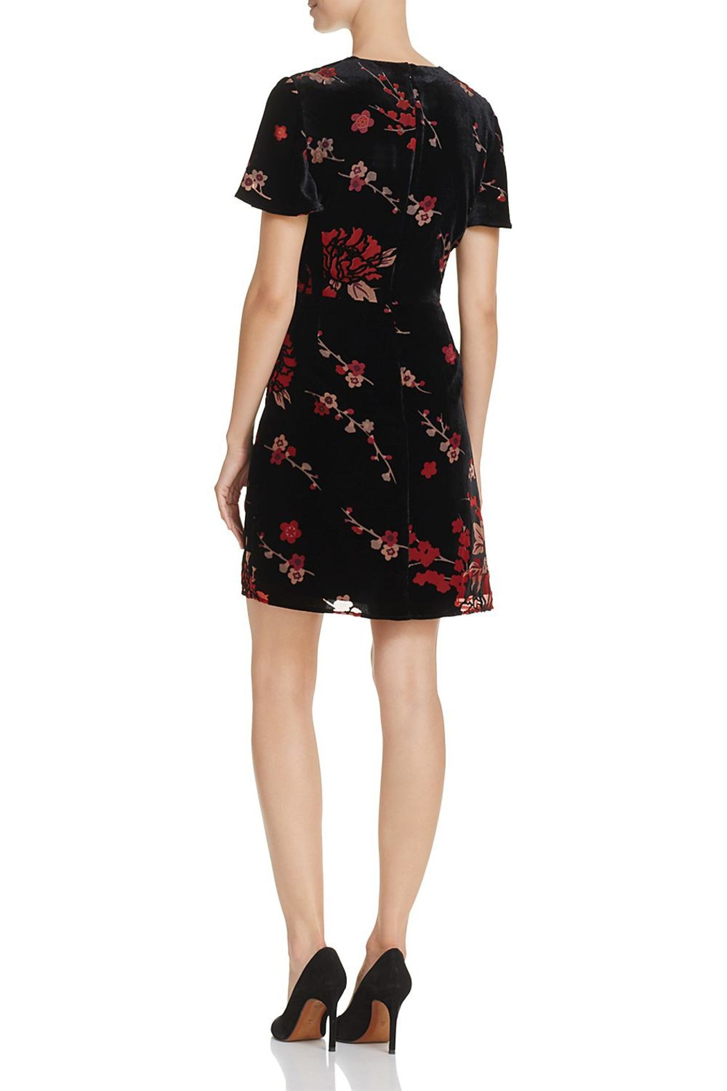 French Connection Burnout Floral Mini-Dress - Front Full Image