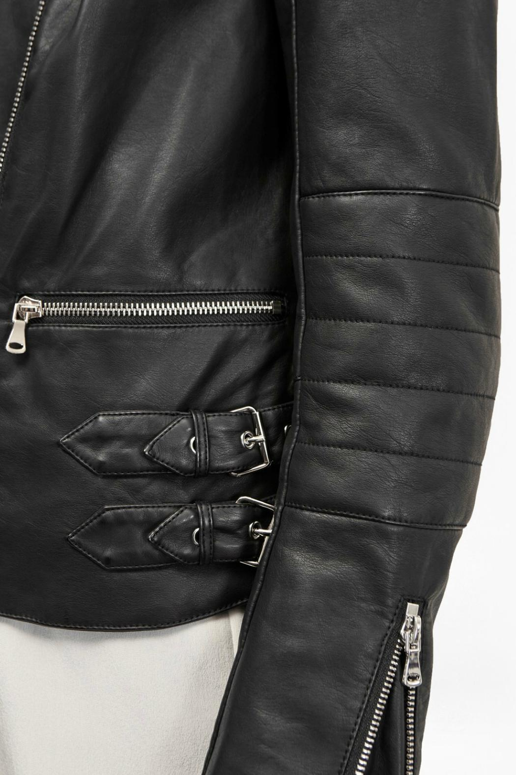 Leather jacket decade - French Connection Decade Jacket Back Cropped Image