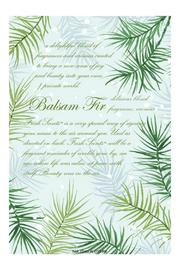 Fresh Scents Balsam Fir Sachet - Product Mini Image