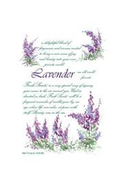 Fresh Scents Lavender Scented Sachet - Product Mini Image