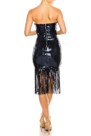 The Sang Fringe Sequin Dress - Back cropped