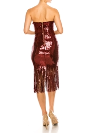 The Sang Fringe Sequin Dress - Other