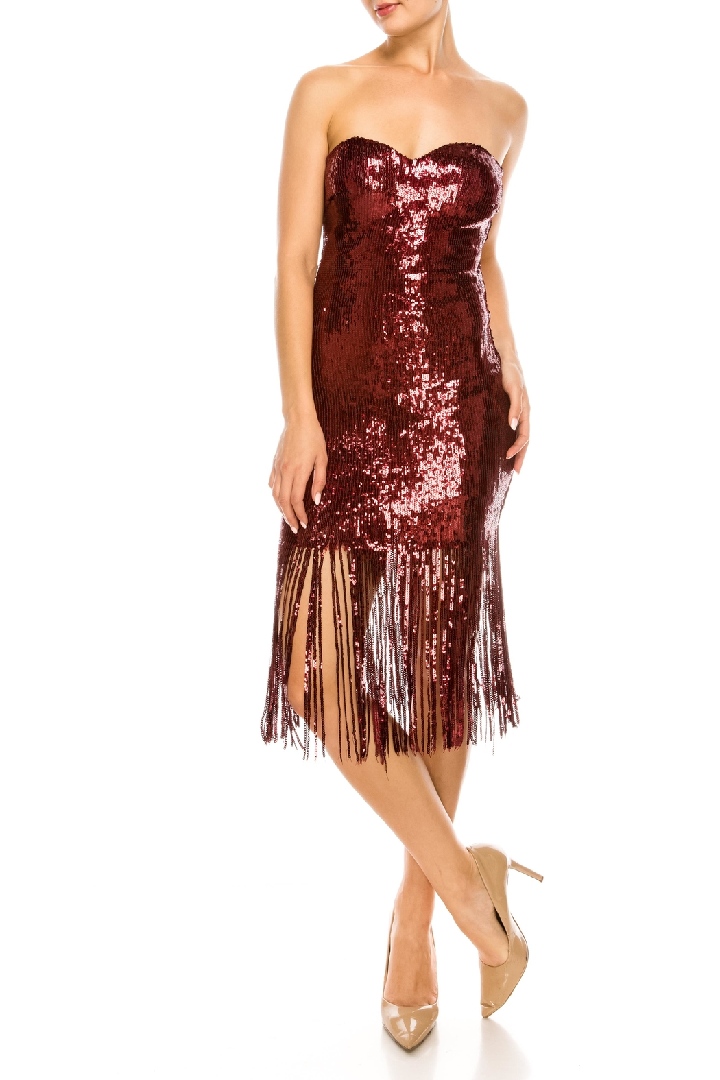 The Sang Fringe Sequin Dress - Side Cropped Image