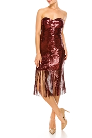 The Sang Fringe Sequin Dress - Side cropped