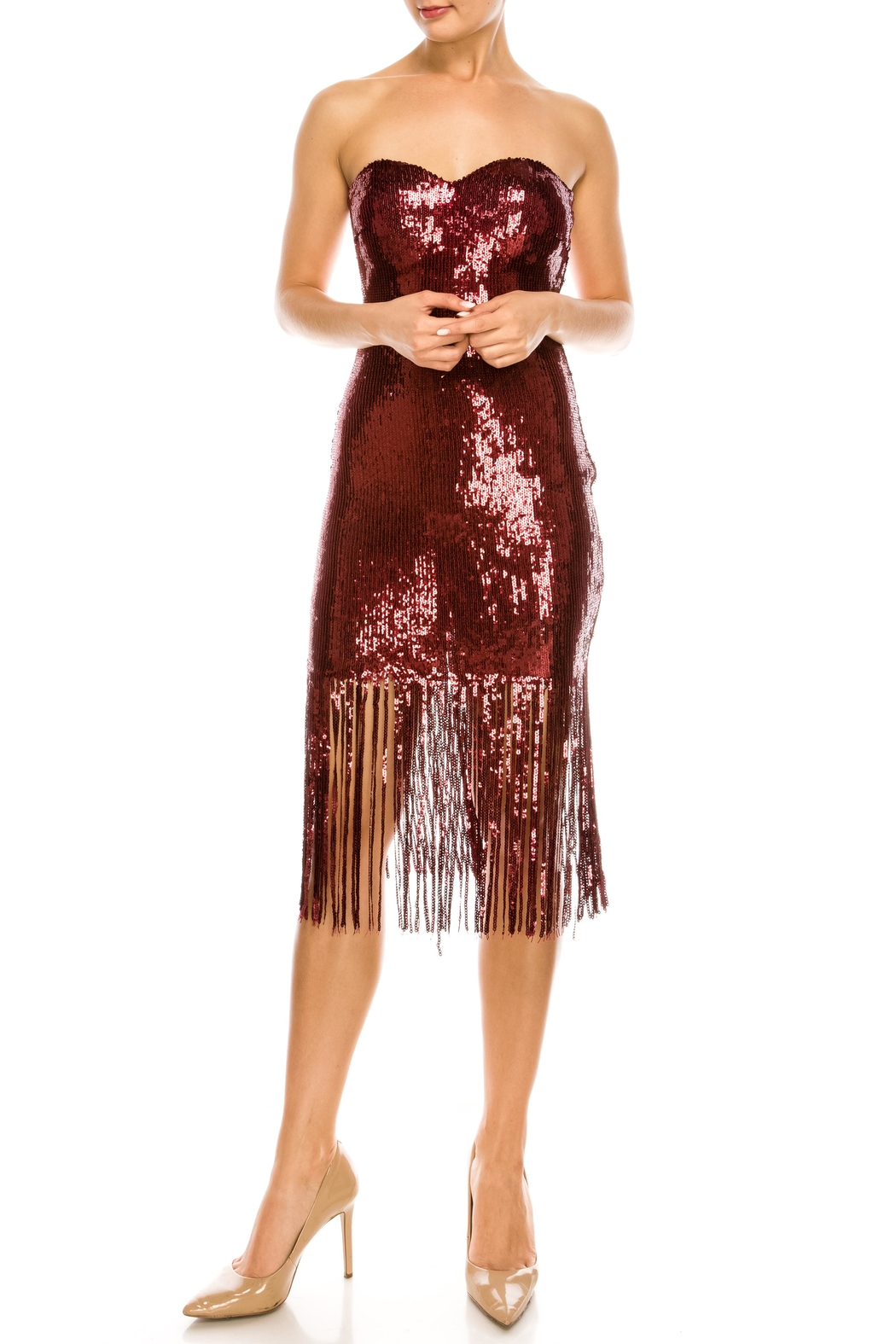 The Sang Fringe Sequin Dress - Main Image