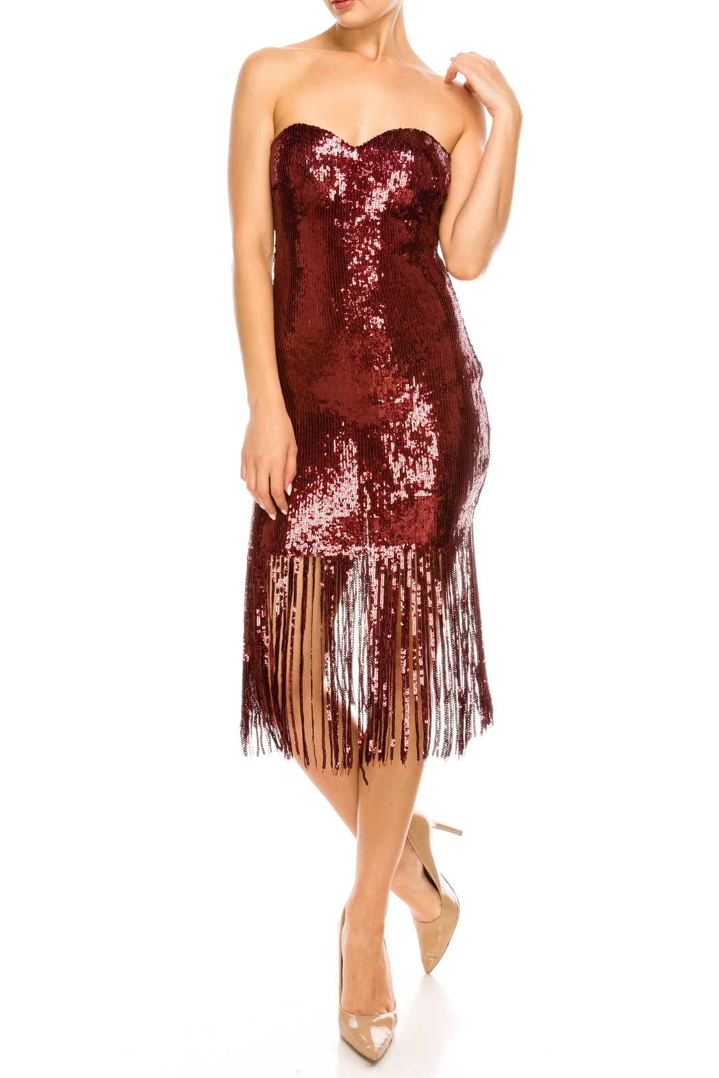 The Sang Fringe Sequin Dress - Front Full Image