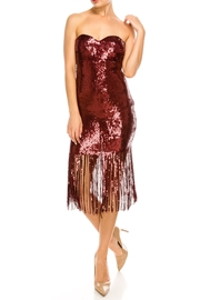The Sang Fringe Sequin Dress - Front full body