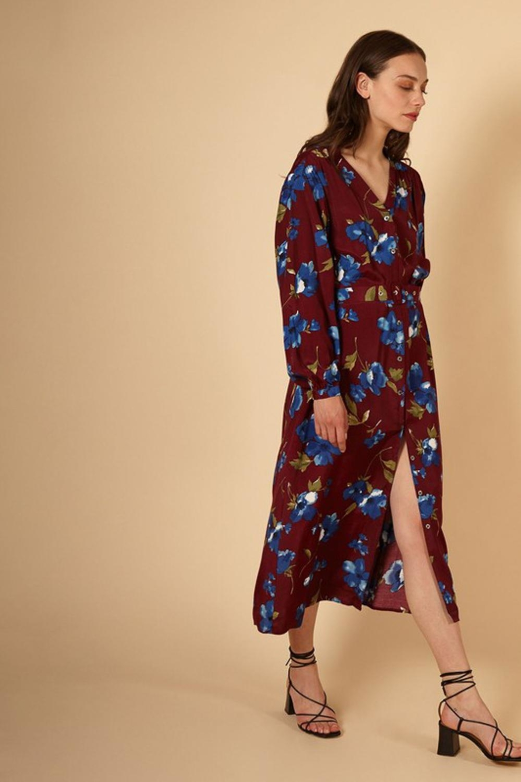 FRNCH Fall Floral Dress - Back Cropped Image