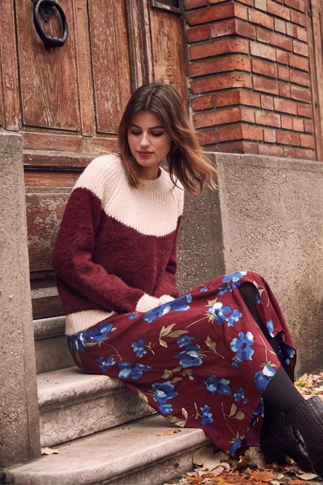 FRNCH Fall Floral Dress - Main Image