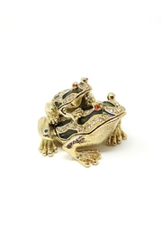 Nadya's Closet Frog Trinket Box - Front cropped