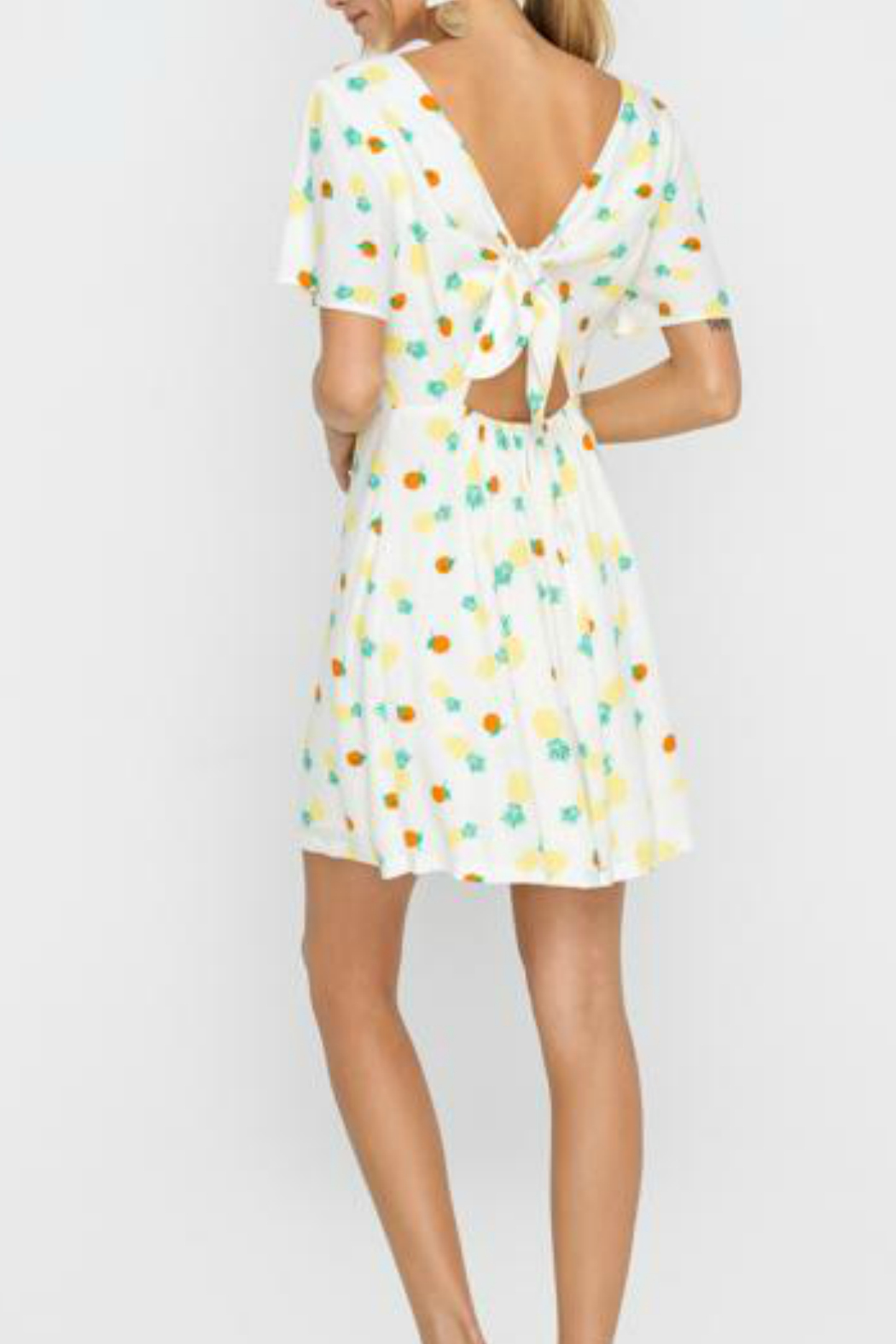 Lush  Front button down dress w/ back tie - Front Full Image