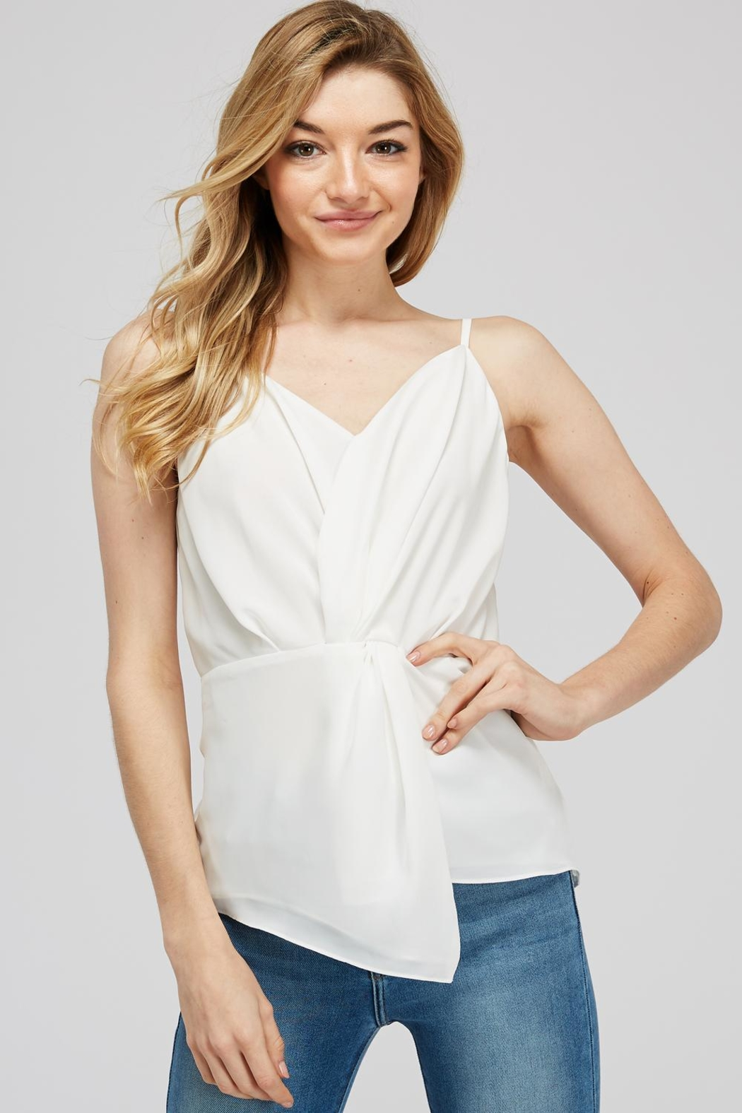 Naked Zebra Front Twist Blouse - Front Cropped Image