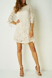 frontrow Nude Lace Dress - Product Mini Image