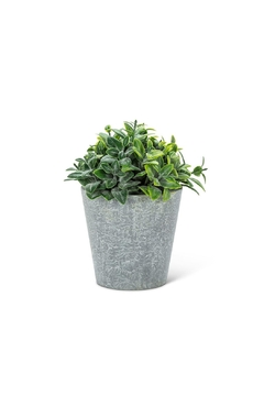 Abbott Collection Frosted Faux Plant - Alternate List Image