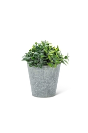 Abbott Collection Frosted Faux Plant - Product Mini Image