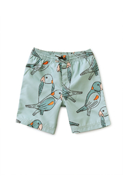 Tea Collection Full-Length Swim Trunks - Front cropped
