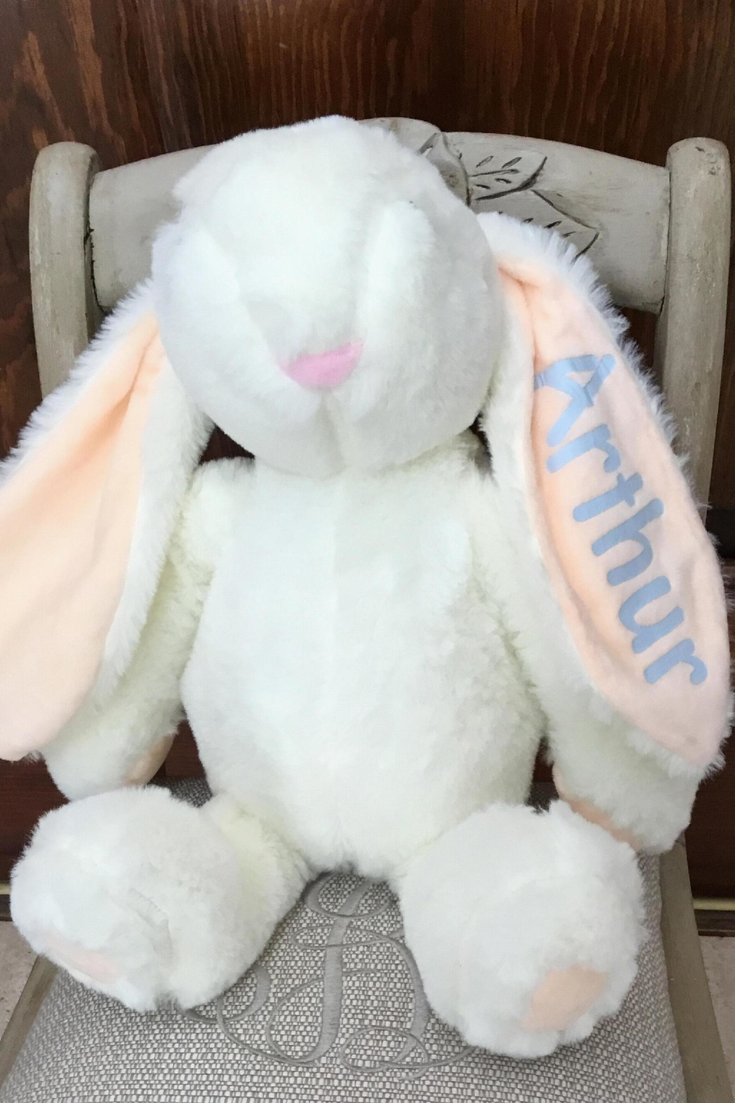 Fun Stuff Plush Personalized Bunny From Alabama By Darnell S Fun