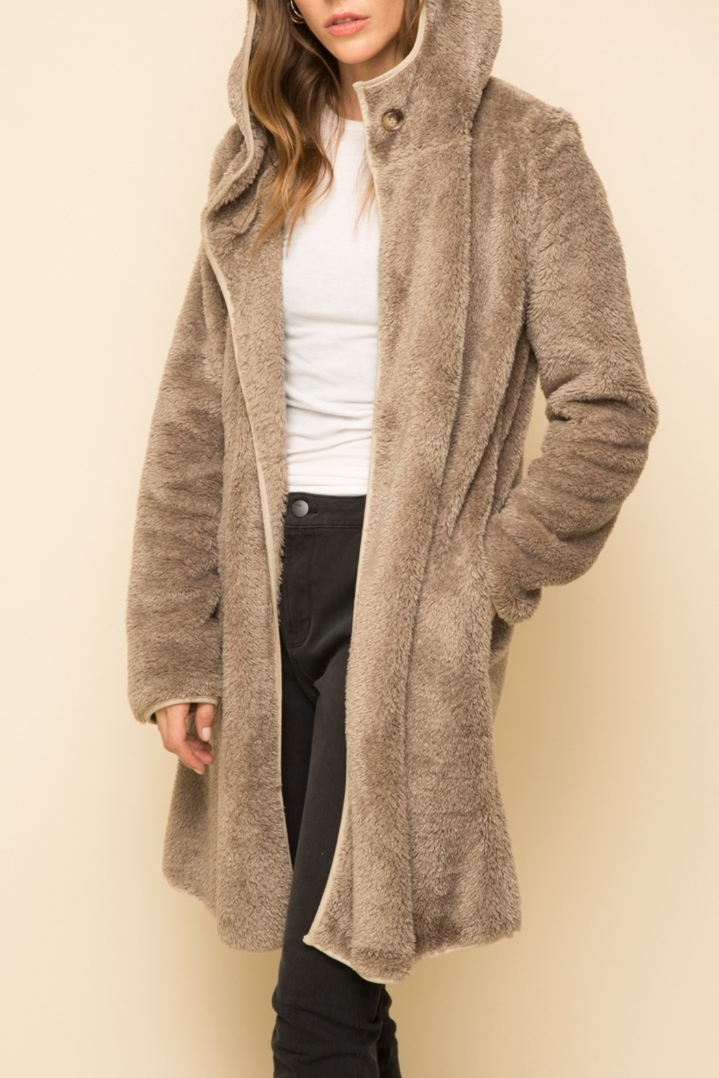 Mystree Fur Hood Coat - Front Cropped Image
