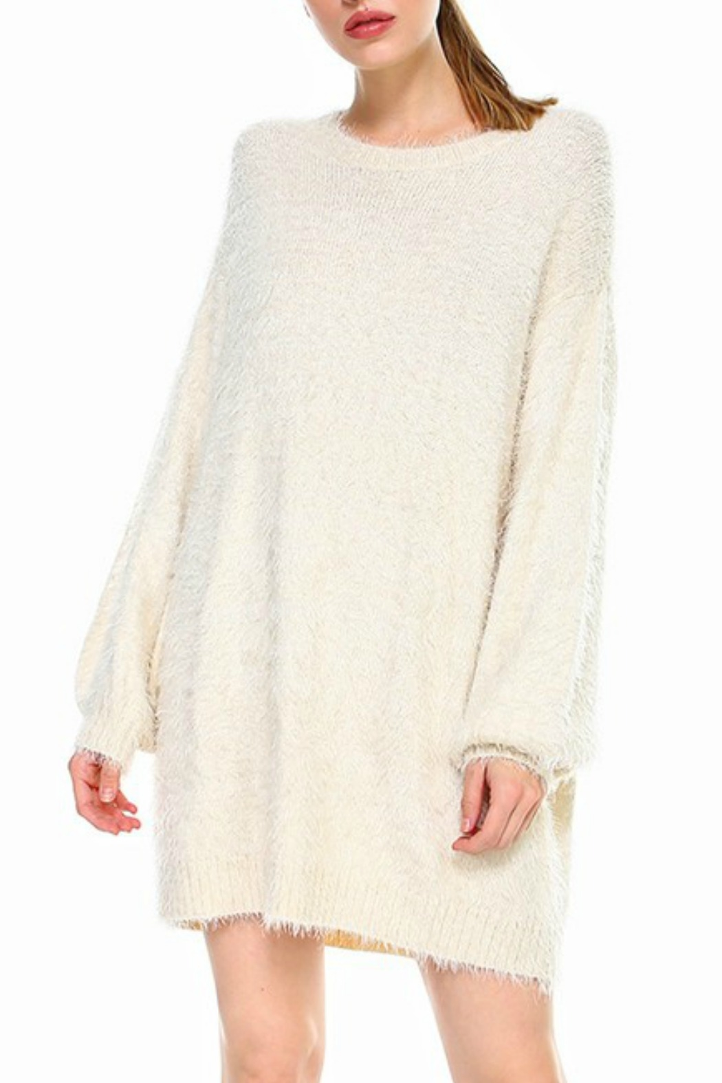 TCEC Fuzzy Sweater Dress - Front Cropped Image