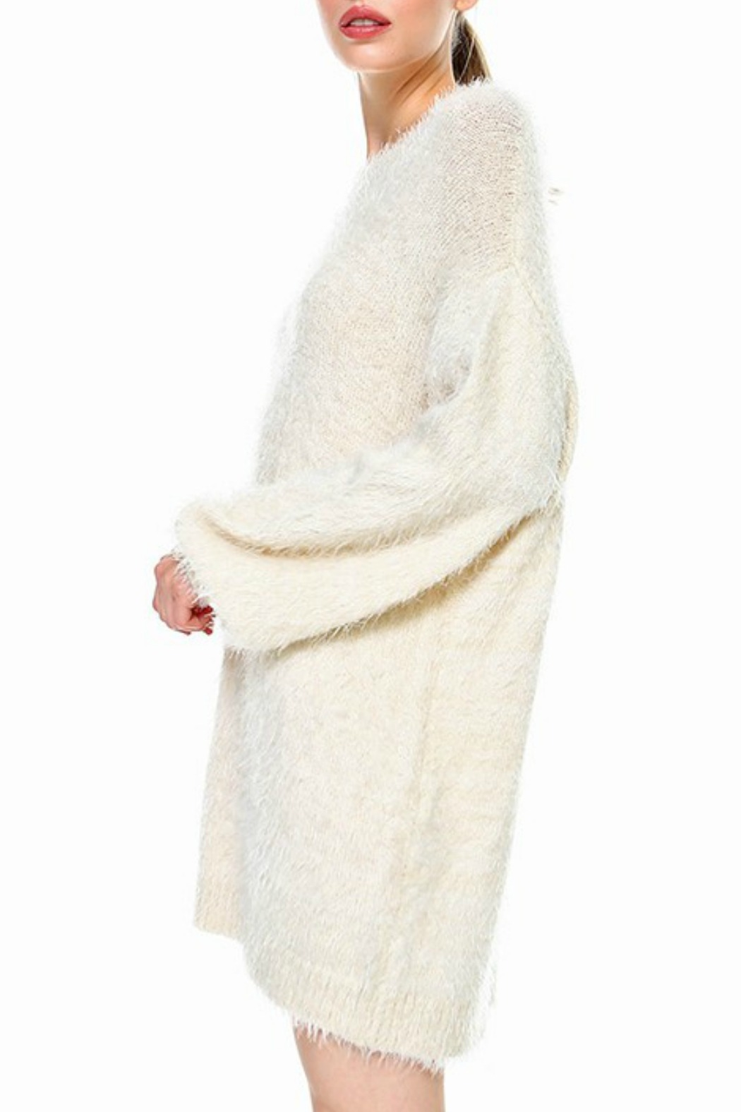 TCEC Fuzzy Sweater Dress - Front Full Image
