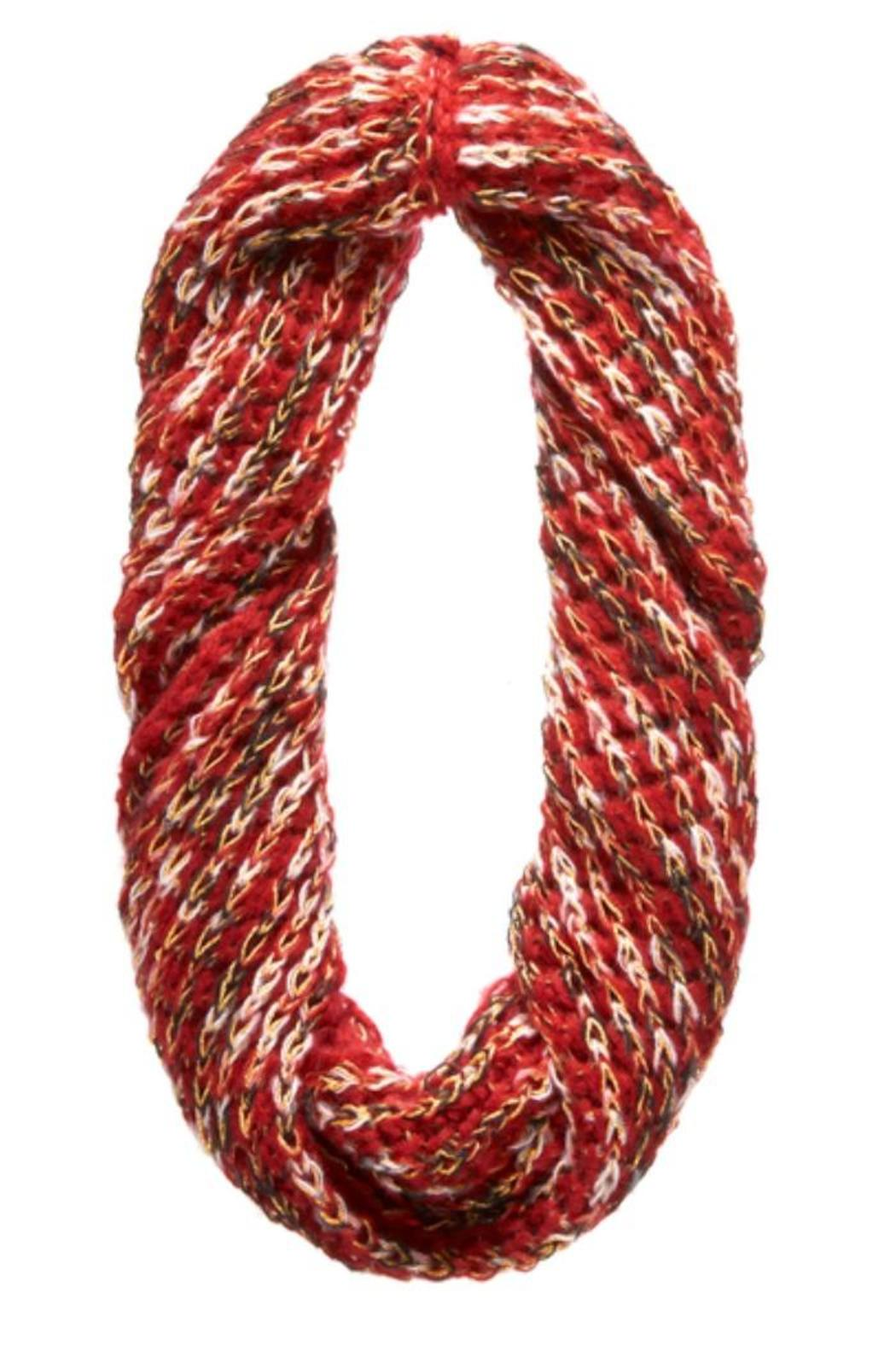 Ganz Confetti Metallic Infinity Scarf - Front Full Image