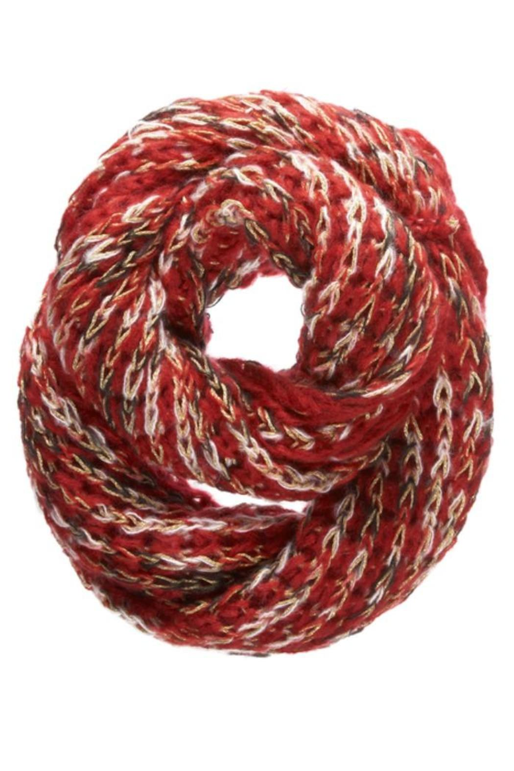 Ganz Confetti Metallic Infinity Scarf - Front Cropped Image