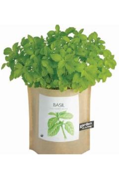Garden in a Bag  | Basil - Product List Image