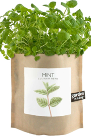 Garden in a Bag  | Mint - Front cropped