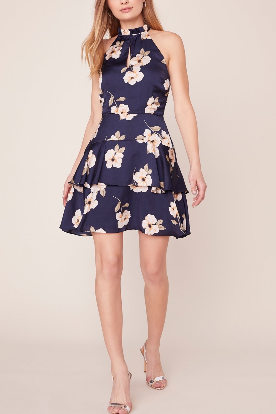BB Dakota Gardenia Party Dress - Front Cropped Image