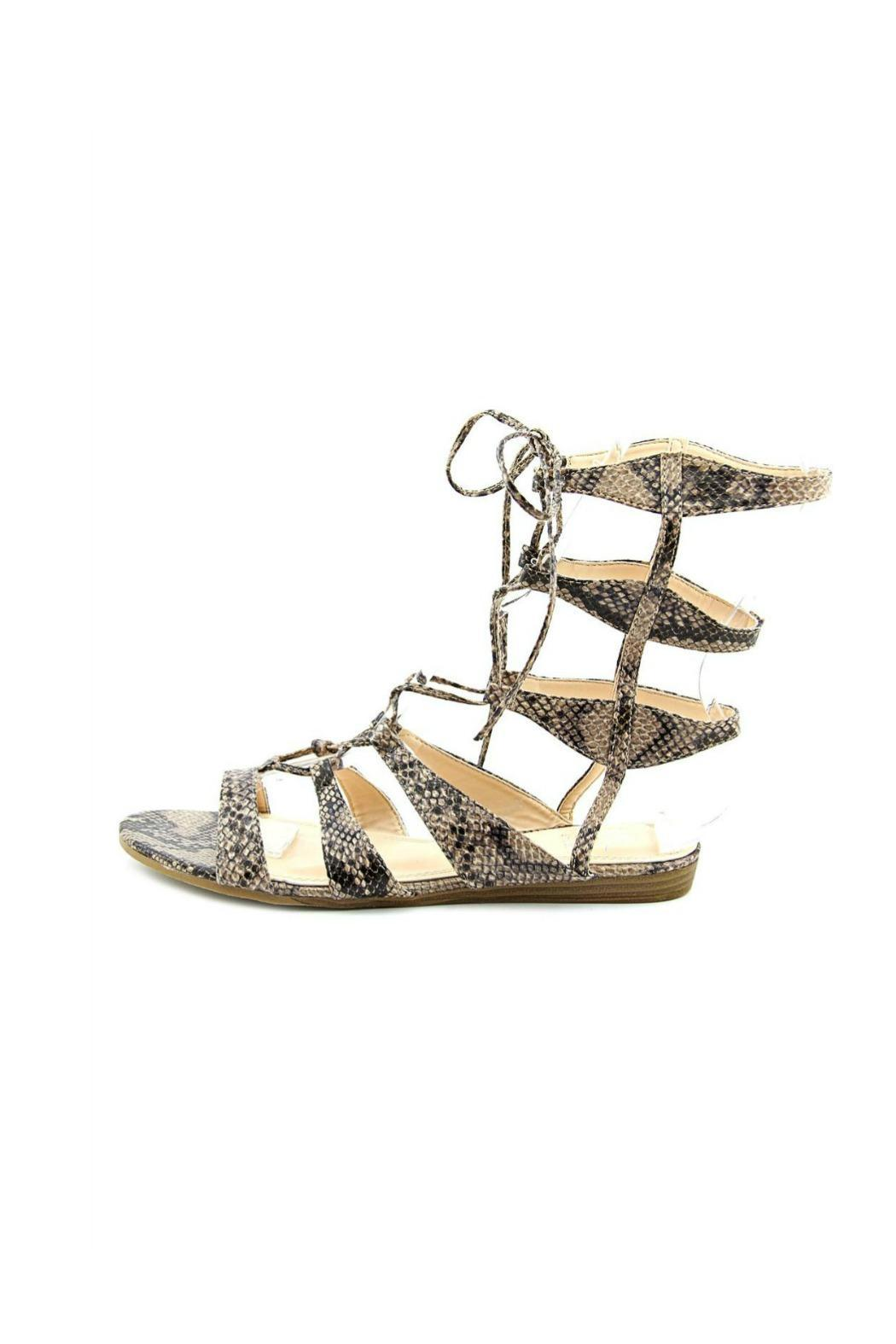 bcc94a21c333 gc shoes Amazon Gladiator Sandal from Louisiana by Yipsy Boutique ...
