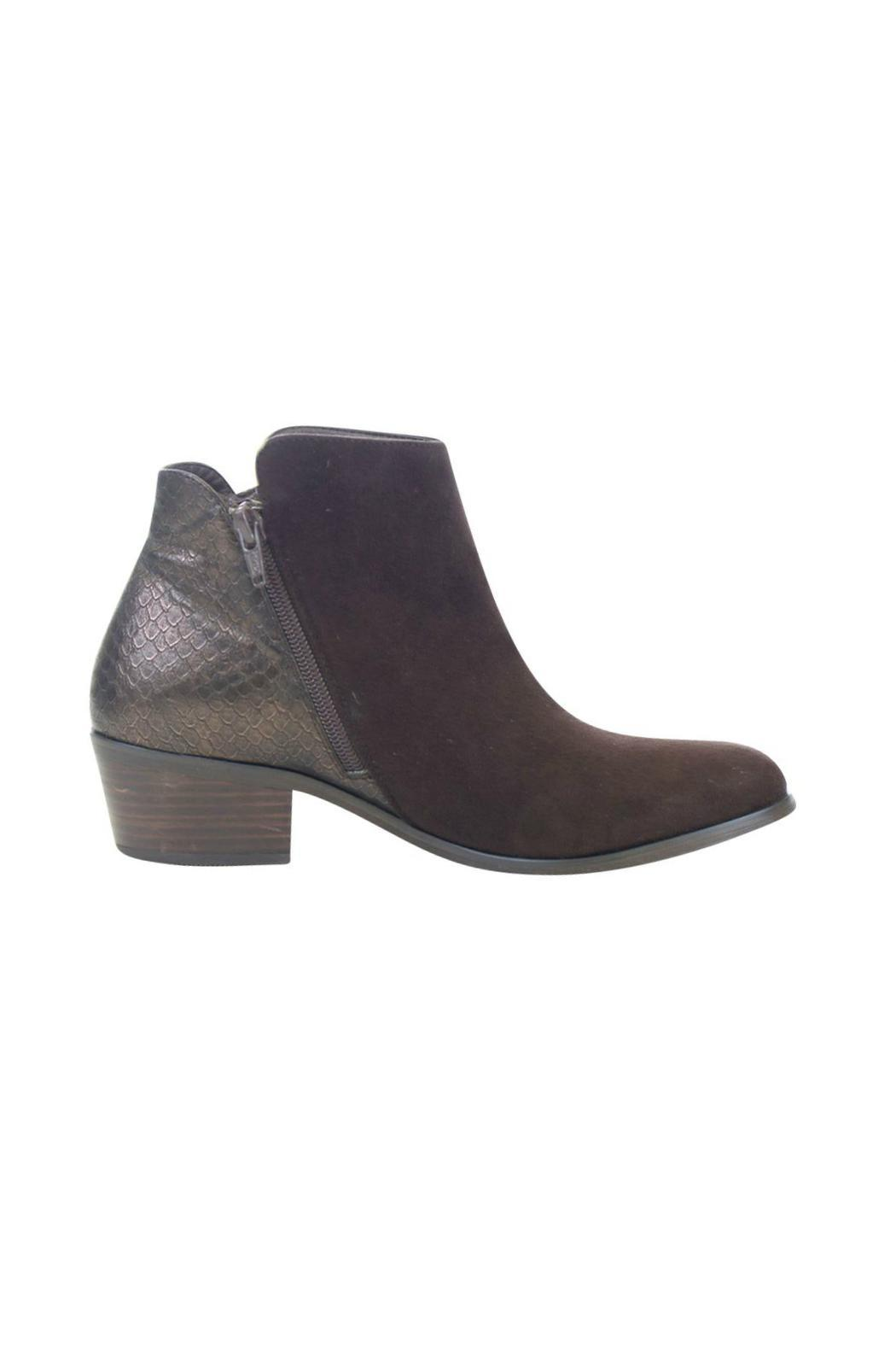 gc shoes Brown Zip Bootie - Back Cropped Image