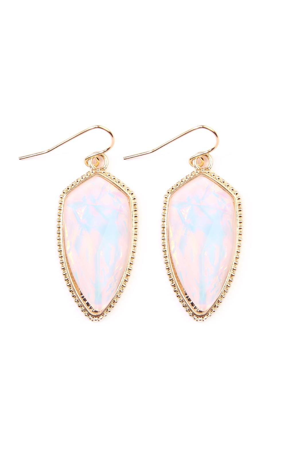 Riah Fashion Gem Fish-Hook Earrings - Front Cropped Image