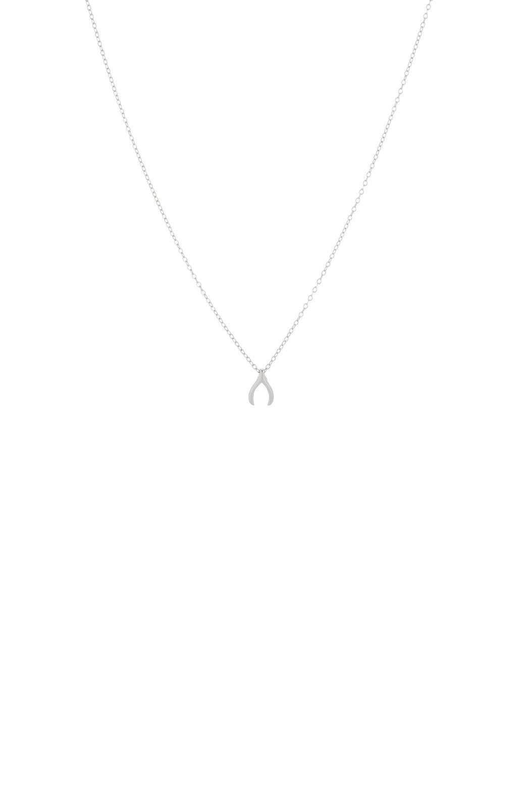 Gemma Collection Silver Wishbone Necklace - Main Image