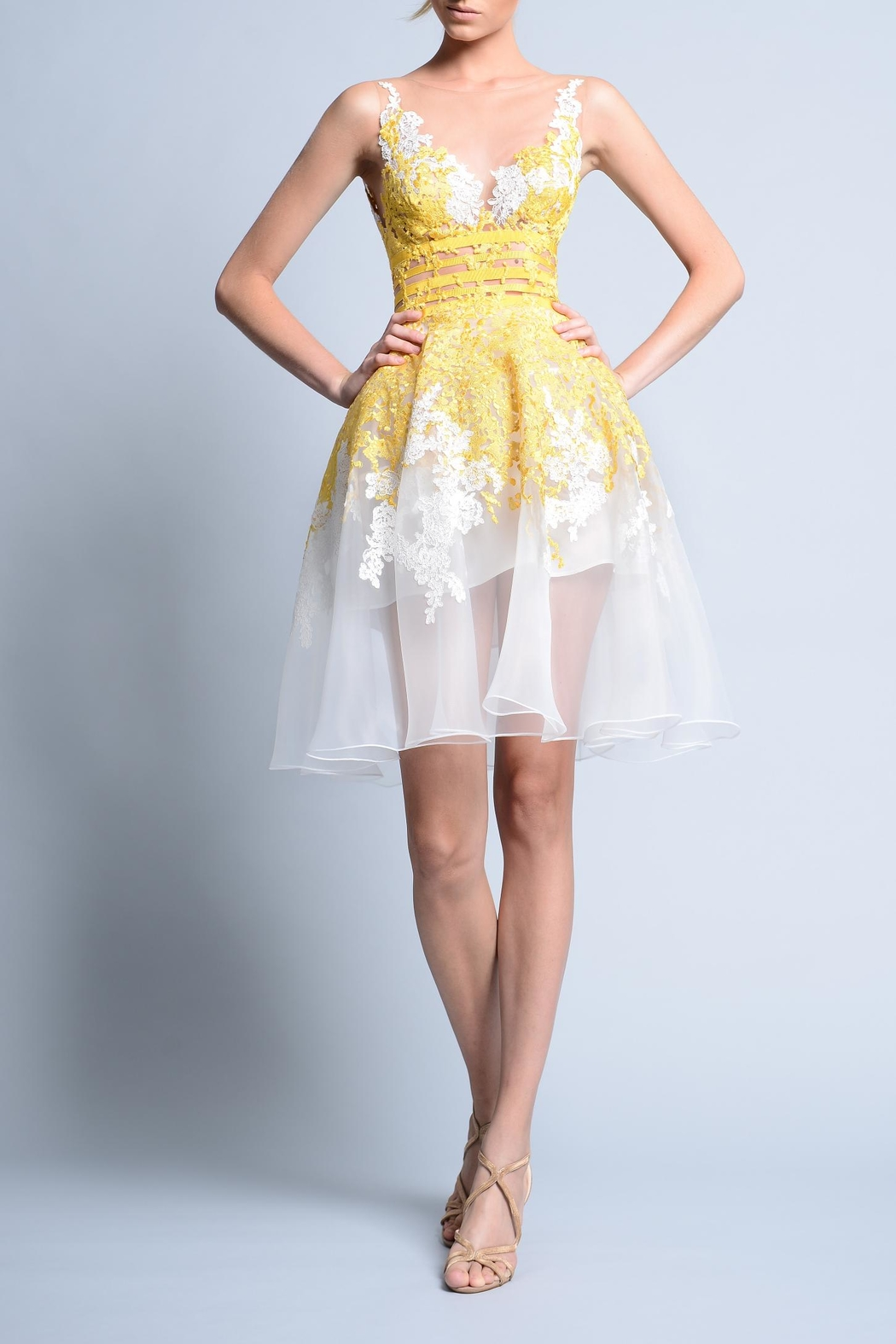 Gemy Maalouf Sleeveless Party Dress - Main Image