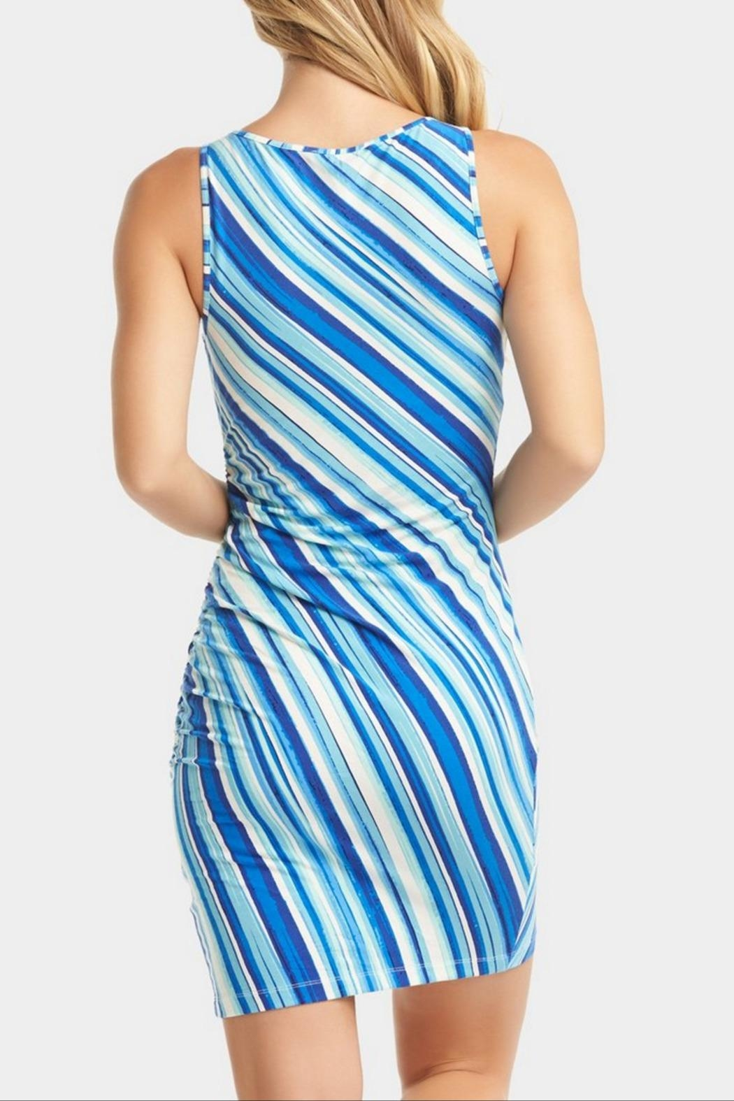 Tart Collections Genelise Striped Dress - Back Cropped Image