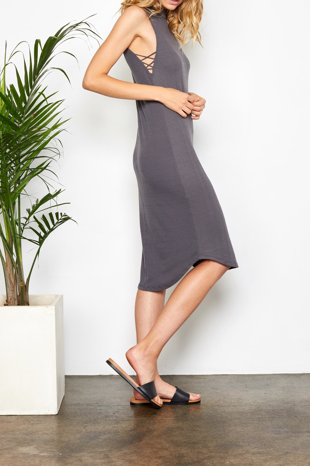 Gentle Fawn Bodycon Midi Dress - Front Full Image