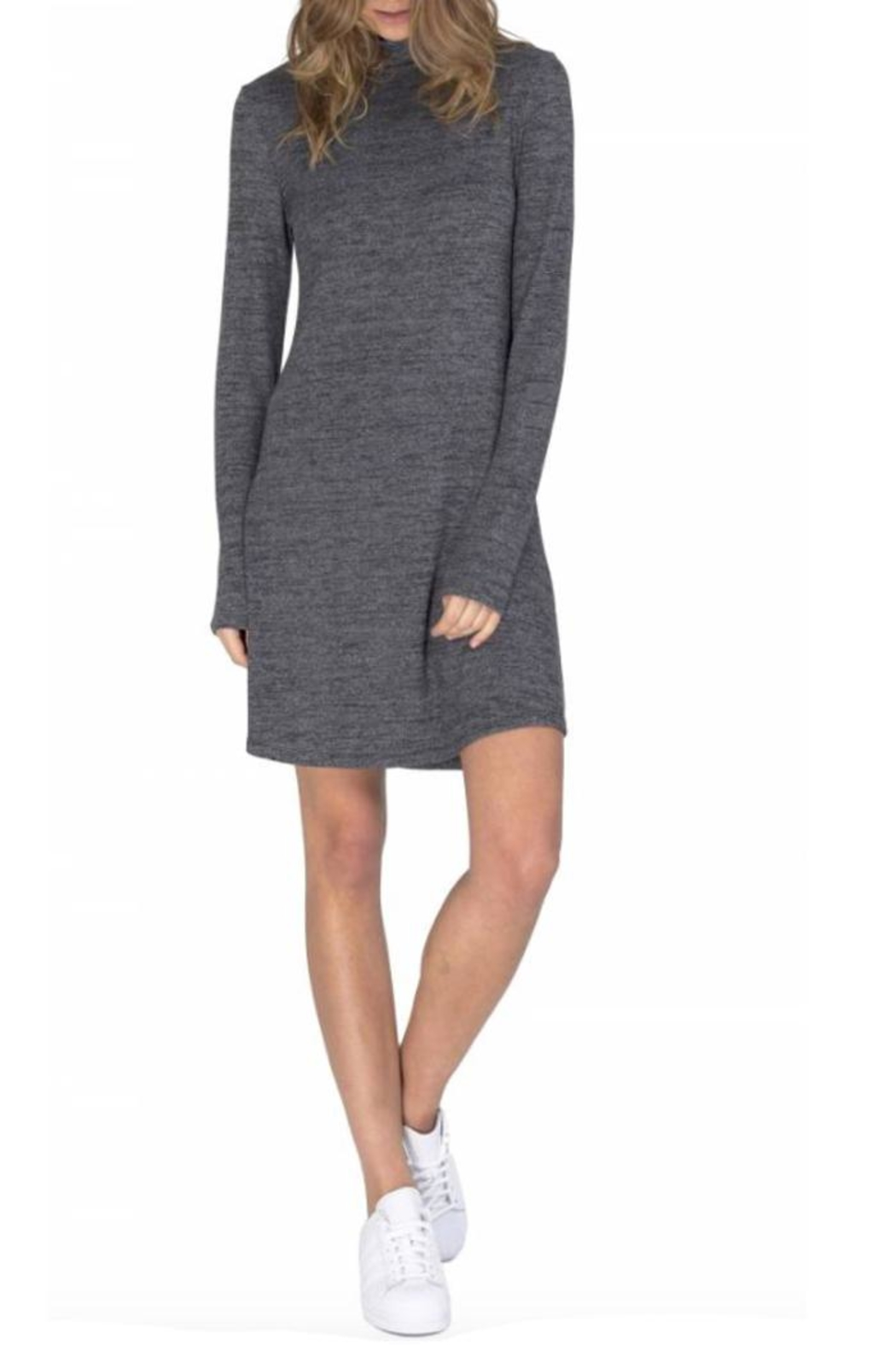 Gentle Fawn Cozy Turtleneck Dress - Front Cropped Image