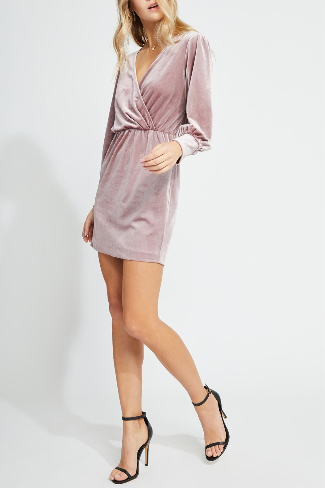 Gentle Fawn Faux Wrap Dress - Front Full Image
