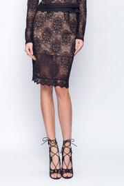Gentle Fawn Lace Mesh Skirt - Product Mini Image