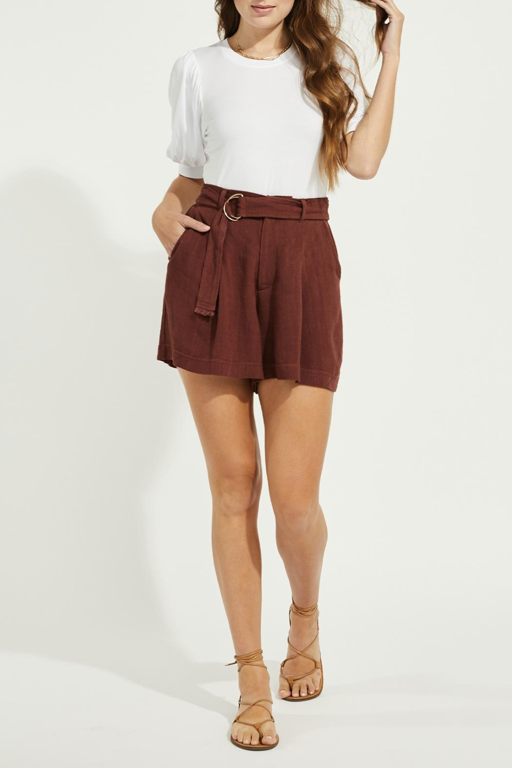Gentle Fawn Linen Blend Shorts - Front Full Image