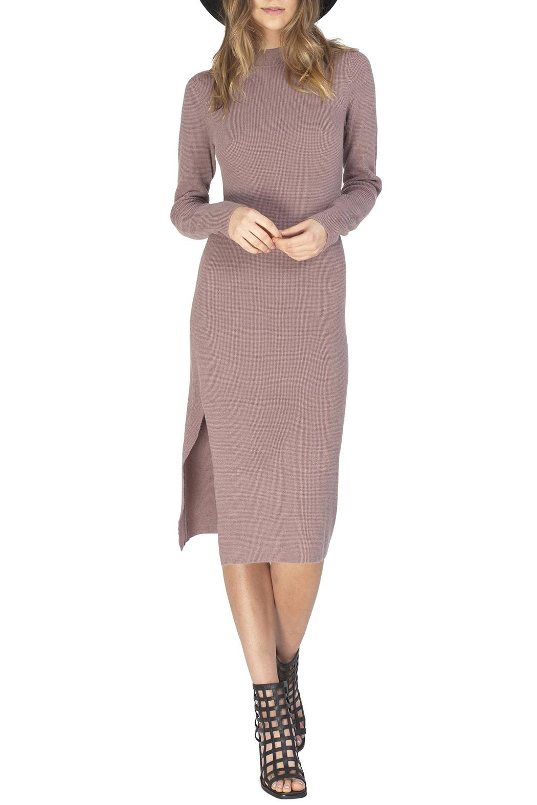 Gentle Fawn Quinn Sweater Dress - Front Cropped Image